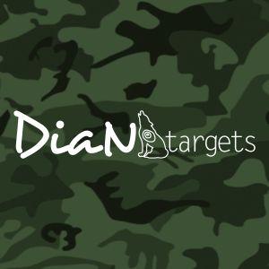 BSV-SPONSOREN-WEB-AKTUELL-2013-dian-targets
